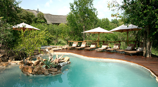 Impodimo Game Lodge - Madikwe Game Reserve - Swimming Pool