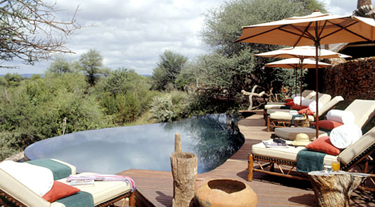 Makanyane Safari Lodge - Madikwe Game Reserve - Main Lodge Swimming Pool