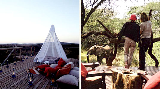 Makanyane Safari Lodge - Madikwe Game Reserve - Safari Hide & Deck