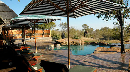 Madikwe Game Reserve - Rhulani Safari Lodge - Main Lodge Deck & Swimming Pool