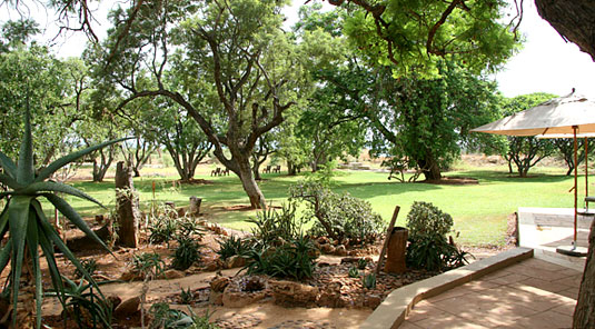 The Gardens - The Bush House - Madikwe Game Park