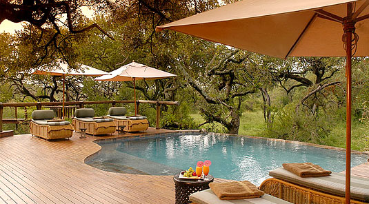 Swimming Pool - Tuningi Safari Lodge - Madikwe Game Reserve