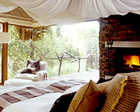 Makanyane Safari Lodge - Madikwe Game Reserve Lodge Accommodation
